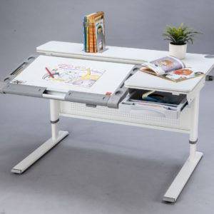 (Ask for postage or free pickup) M24 Berlin Encore S Standing Desk